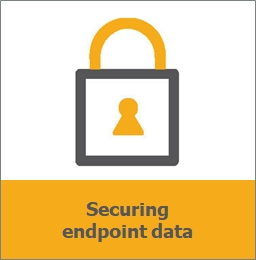 DLO הגנה על המידע הארגוני בנקודות הקצה
